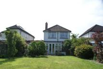 Molyneux Road Detached property to rent