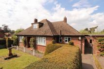 4 bed Detached Bungalow for sale in Ruskin Road, Costessey...