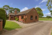 Detached Bungalow in Traice Road, Fundenhall...