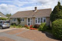 3 bedroom Detached Bungalow in Carisbrooke