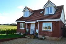 5 bed Detached home for sale in REDUCED & CHAIN FREE ! 5...