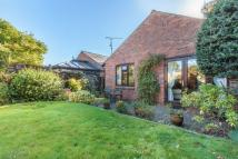 Detached Bungalow for sale in Hallowsgate Court...
