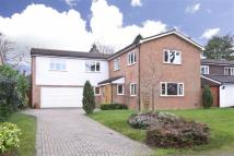 Beech Way Detached house for sale