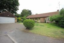 Detached home for sale in Beech Way, Blackmore End...