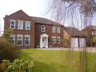 Detached home for sale in Grange Court, Bessacarr...