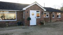 Bungalow to rent in The Dene...
