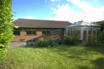 4 bed Detached Bungalow in HITCHIN, Hertfordshire