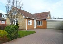 Bungalow to rent in Rosehill, Great Ayton...