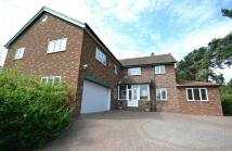6 bed Detached house to rent in The Spital, Yarm
