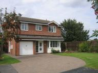 Canon Grove Detached house to rent