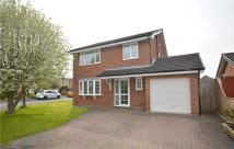 4 bed Detached home to rent in Bulmer Close, Yarm