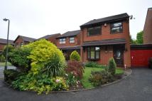 3 bed Link Detached House to rent in Cottage Lane, Marlbrook...