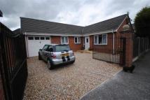 3 bedroom Bungalow in 41 Bryn Road South...
