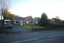 4 bedroom Bungalow to rent in Soughers Lane, Bryn...