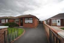 3 bed Bungalow to rent in Hyacinth Close, Haydock...
