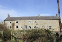 Detached property in Stamfordham
