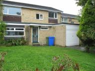 Detached house to rent in Cramlington