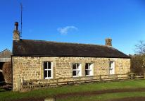 Detached Bungalow to rent in Chipchase, Wark, Hexham...
