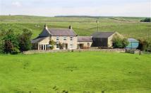property for sale in Haltwhistle