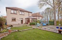 4 bed Detached house for sale in The Paddock...