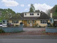 FERNDOWN Commercial Property for sale