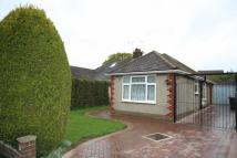 Semi-Detached Bungalow to rent in Hawthorn Crescent...