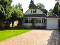 Detached Bungalow in Mancroft Road...
