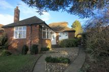 Detached property for sale in Mancroft Road, Caddington