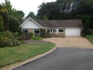 Bungalow for sale in Oakfield, Hawkhurst...