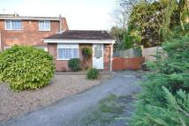 Semi-Detached Bungalow in RUSSET CLOSE, OAKWOOD