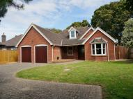 3 bedroom Detached Bungalow in SOLENT ROAD, HILL HEAD