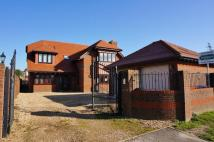 7 bed Detached property in PORTCHESTER