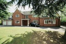 7 bedroom Detached house in Newick Avenue...