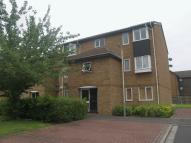 Newcombe Rise Ground Flat to rent