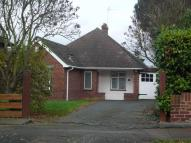 3 bed Semi-Detached Bungalow to rent in Sweetcroft Lane...