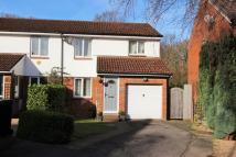 3 bedroom semi detached home to rent in Salcombe Close...