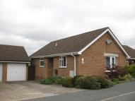 Semi-Detached Bungalow to rent in Chase Close, Haverhill