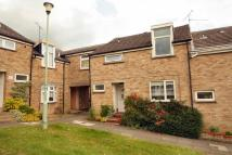 Terraced house to rent in Ickleton Place, Haverhill