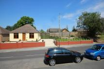 3 bed Detached Bungalow for sale in New Cheveley Road...
