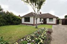 Detached Bungalow in Mildenhall