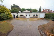 Detached Bungalow in Station Road, Kennett