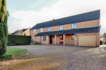 4 bedroom semi detached house for sale in Fordham