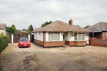 Detached Bungalow to rent in Ness Road, Burwell