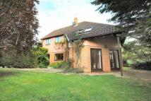 4 bedroom Detached home in Fordham