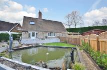 Detached property in LANGSTONE