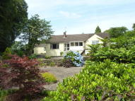 4 bed Detached Bungalow for sale in Brockweir, Near Chepstow
