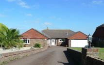 Detached Bungalow for sale in Willingdon Park Drive...