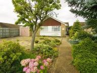 Detached Bungalow in Frymley View, Windsor...
