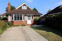 4 bed Detached Bungalow to rent in Tilstone Close...