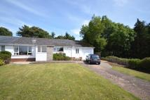 3 bed Bungalow for sale in Woodbury, Devon
